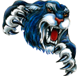CCSD#1 Logo